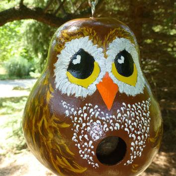 Birdhouse Owlgourd