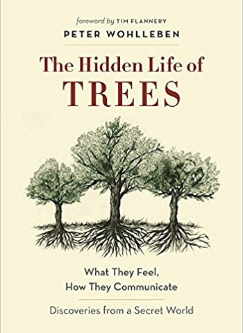 Book: The Hidden Life of Trees by Peter Wohlleben